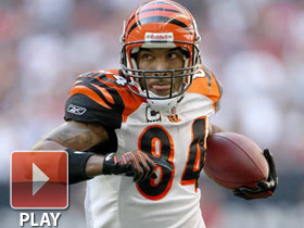 2008: Best of T.J. Houshmandzadeh